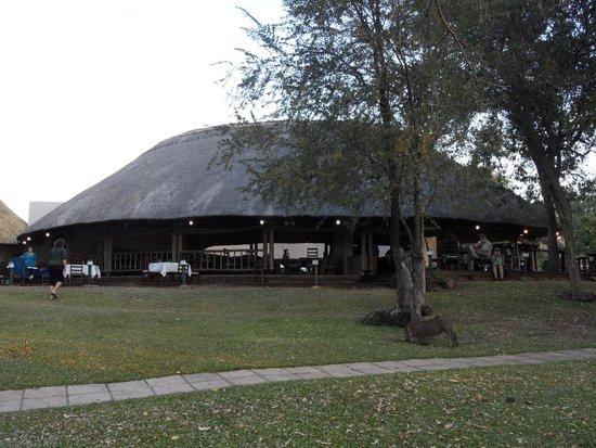 A'Zambezi River Lodge: Lawn mowers