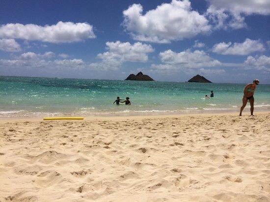 Lanikai Beach: Beach!