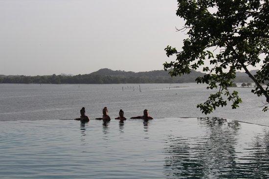 Heritance Kandalama : Pool