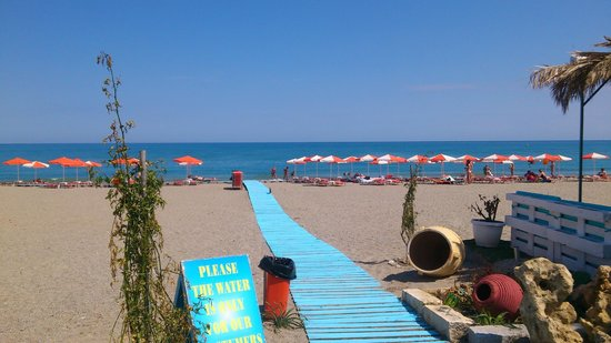Roulis Beach Bar: our beach