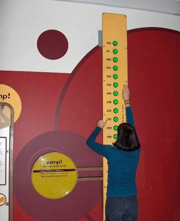 Science World: how high can you jump?