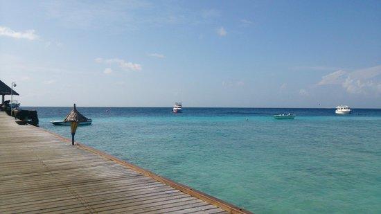 Vivanta by Taj Coral Reef Maldives: 海