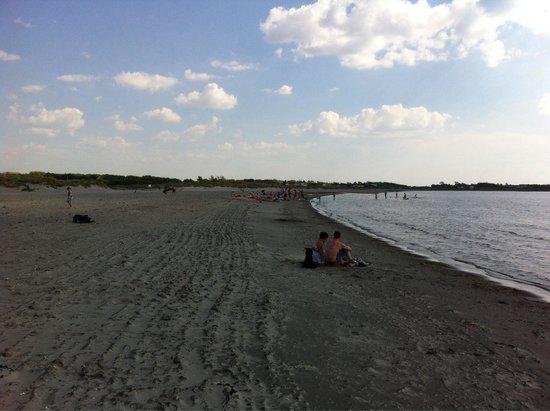 Apelvikens Camping : Stranda ved campingplassen