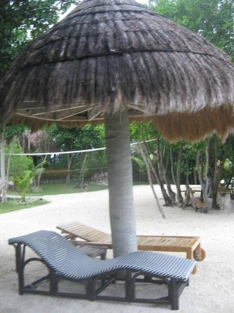 Sea Turtle House Moalboal: Relax by the sea