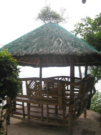 Sea Turtle House Moalboal: Eat by the sea