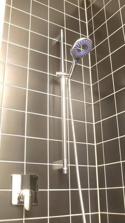 Lindner Hotel & Sports Academy: Dusche mit exklusiver Handbrause