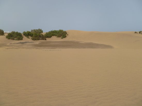 Playa de Maspalomas: sand and more sand
