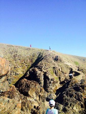 Discovery Parks - Emerald Beach: Walk
