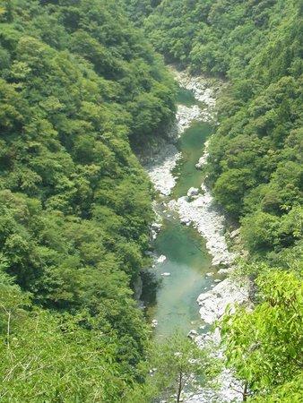 Iyakei Valley: 途中のビューポイントからの祖谷渓のながめ