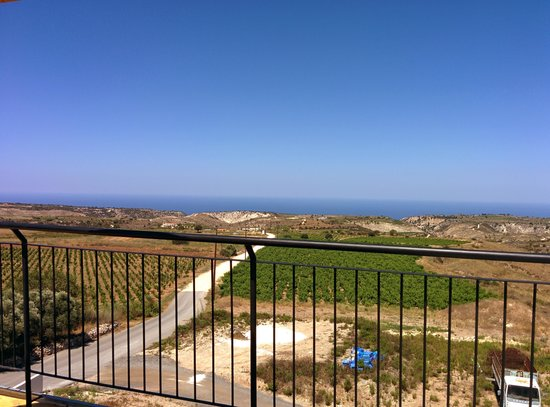 Paphos Wine Tours Day Tours: Vasilikon Winery View from patio/museum