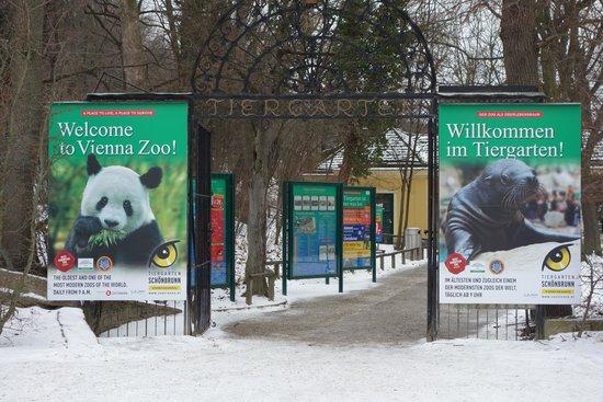 Tiergarten Schoenbrunn - Zoo Vienna : вход