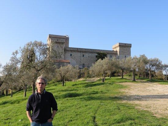 Rocca Albornoz di Narni : narni