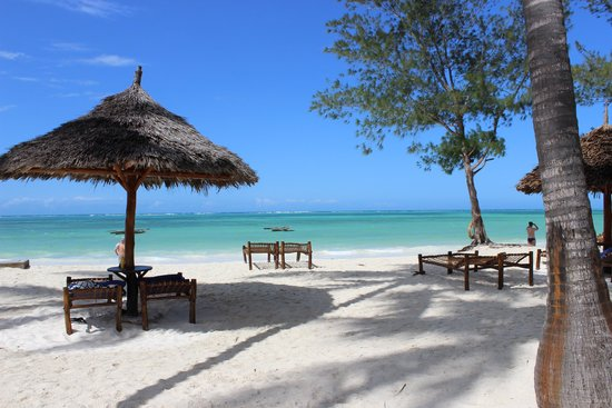 Dream of Zanzibar: nice beach