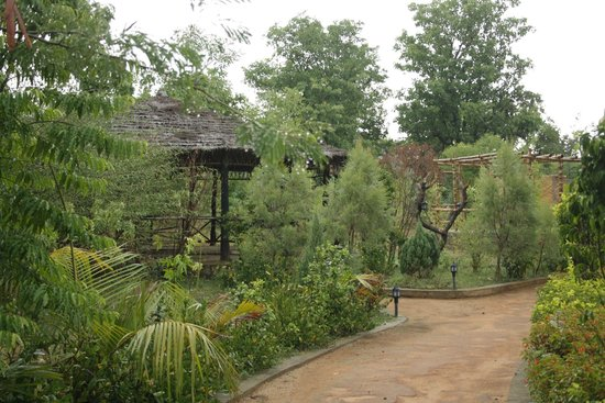 The Wildflower Resort: Greenery all around