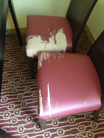 TownePlace Suites Savannah Airport: Chairs at the table in the room