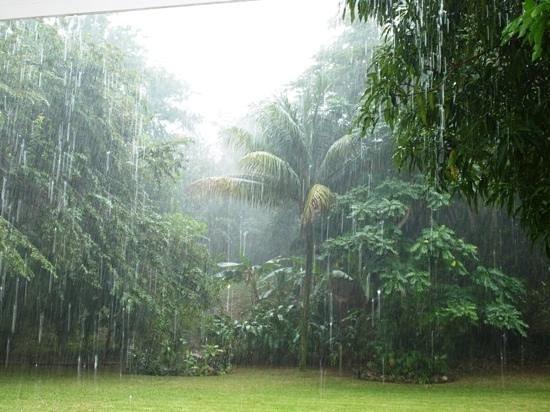 Beautiful Rain Picture Of Garden House Jamaica Ocho