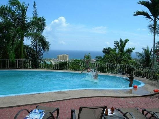 Garden House Jamaica: Pool and view