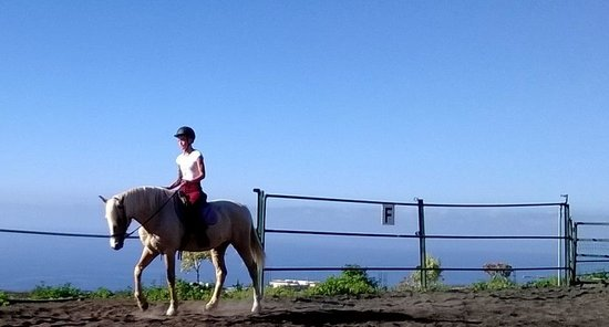 Horse Riding Tenerife: Fantastic views
