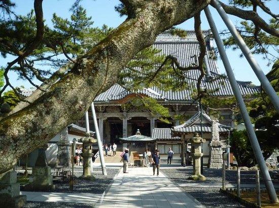 Tanjoji : 誕生寺