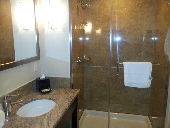 Holiday Inn L.I. City - Manhattan View: Bathroom
