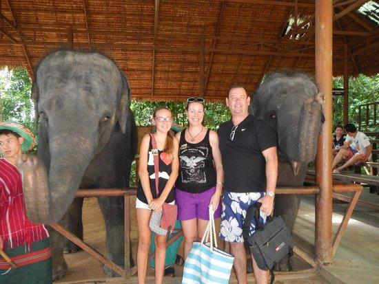 Siam Safari : Baby elephant show