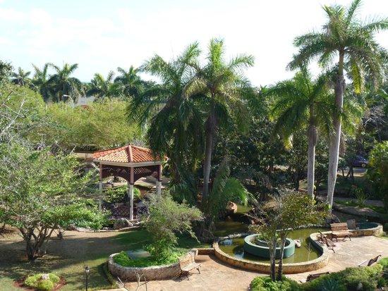 Brisas del Caribe Hotel: Сад.