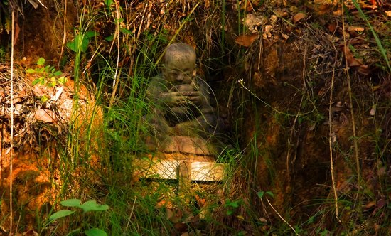 Wamuran, Australia: Little hidden buddha
