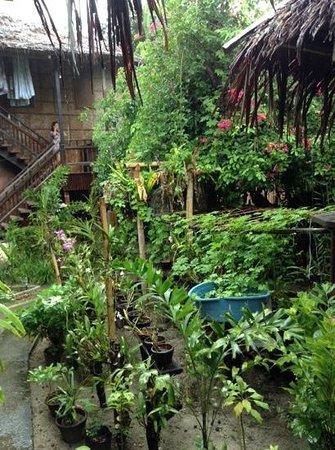 Orchids Resort: lovely garden