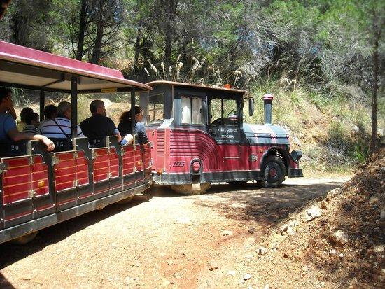 Parco Minerario dell'Isola d'Elba : Trenino che porta alla miniera