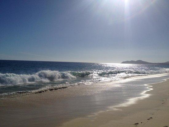 Las Ventanas al Paraiso, A Rosewood Resort: Strand (nicht zum baden geeignet)