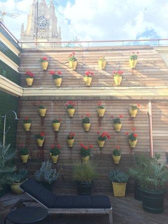 Praktik Metropol: Roof terrace