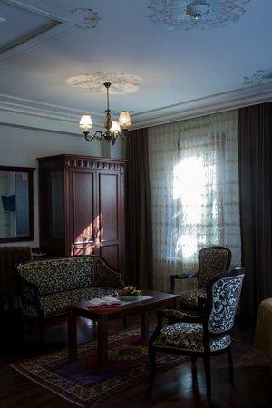 Tashkonak Studio Suites: Studio Suite Room