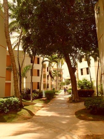 Viva Wyndham Dominicus Beach: Habitaciones tranquilas