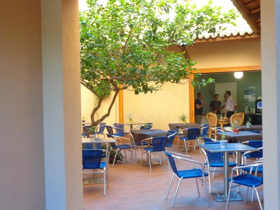 Hotel Punta Nord-Est: breakfast in the courtyard under the lime tree.  Special!
