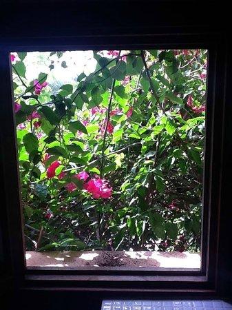 Finca Son Jorbo: View from Lila Bathroom