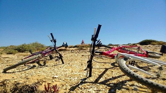 Monte do Zeca: Free bikes to enjoy the coastline