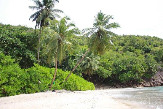 Beach Cottages: Anse Major