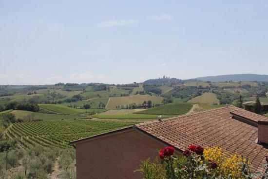 Walkabout Florence Tours: Chianti Region