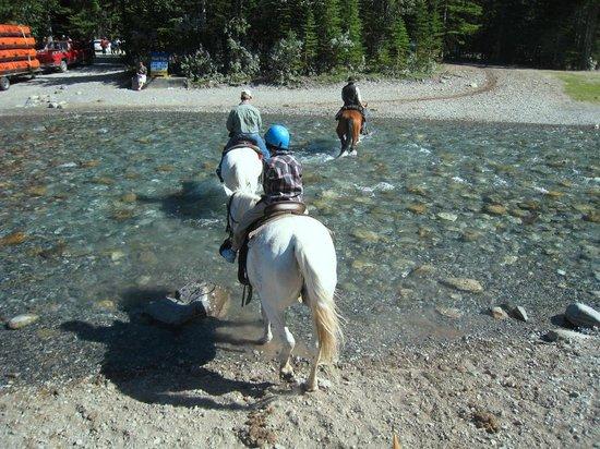 Bow Falls: 乗馬で楽しむボウ川