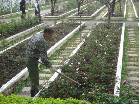 C.K.S. Shilin Residence Park: park full of blossoms