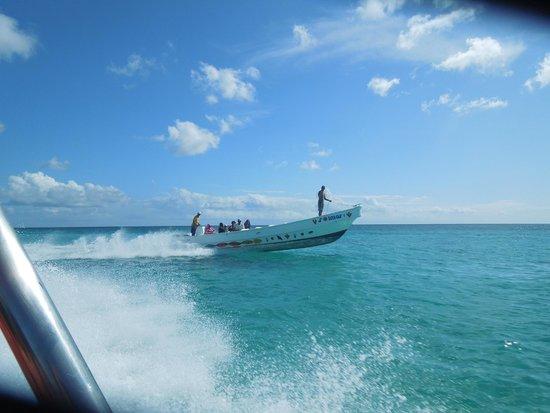 Iberostar Hacienda Dominicus : Saona Island Speed boat
