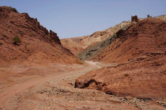 Real Morocco Tours - Private Day Tours: On the road back to Marrakech from high Atlas