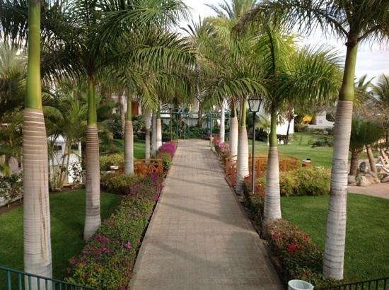 Hotel Riu Palace Maspalomas: tuin