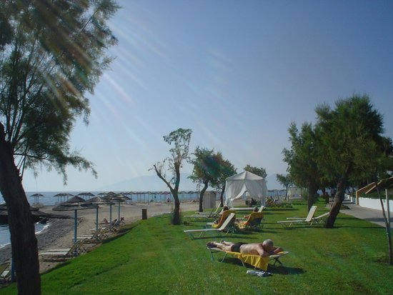 Sensimar Oceanis Beach & Spa Resort: lawn good alternative to beach