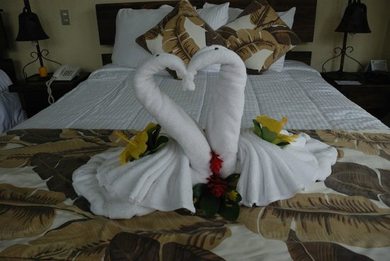 Arenal Springs Resort and Spa: A swan-towel welcome