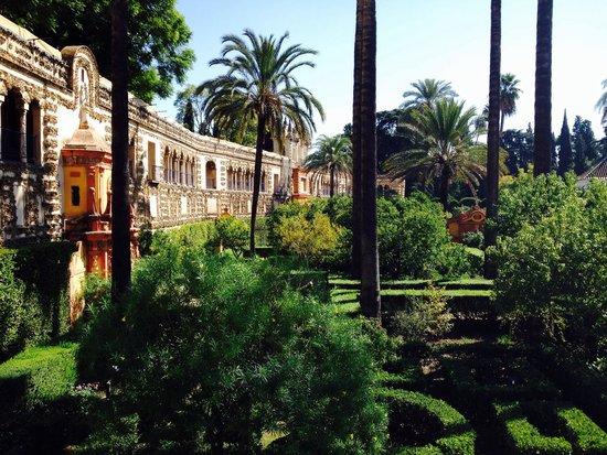 Real Alcázar: Gardens