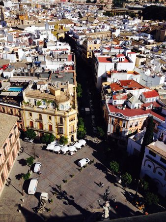 Catedral de Sevilla: View from the belltower