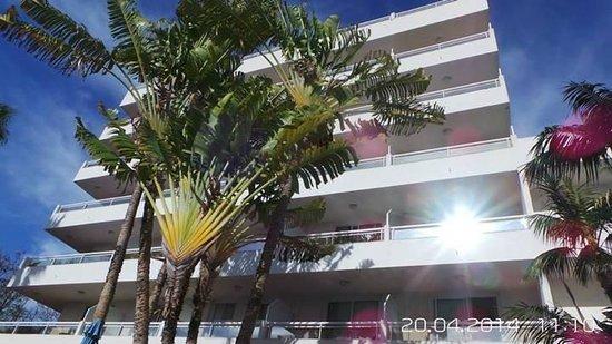 Catalonia Oro Negro: The hotel pool view