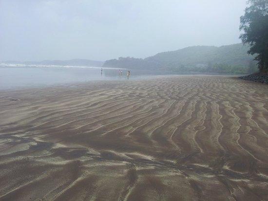 Golden Swan Beach Resort : Seems like private beach..