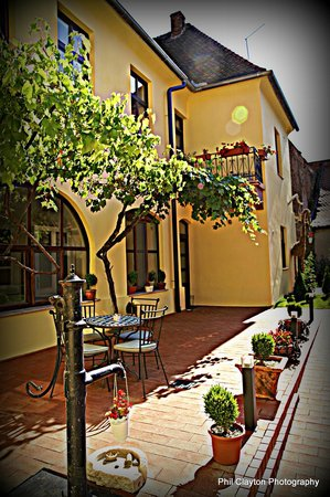 Guesthouse Maksimilian: patio